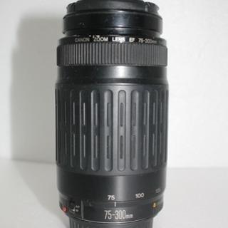 Canon EF 75-300mm F4.5-5.6 ii