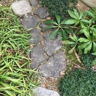 庭作りにお勧め! 天然石 飛び石  本物! 約10個あります