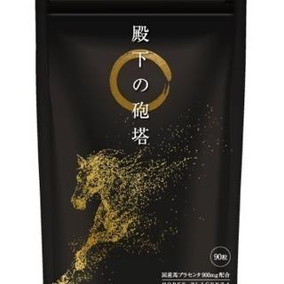 【大サイズ お試し価格】 男のギンx2 サプリメント☆純国産フ...