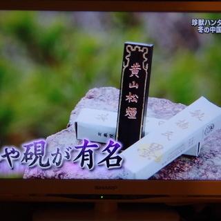 SHARP LC-24K9 テレビ