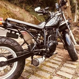 バイク ツーリング メンバー募集!!