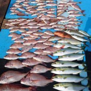 海鮮料理、海釣り大好きサークル in 愛知 『Fisherman ...