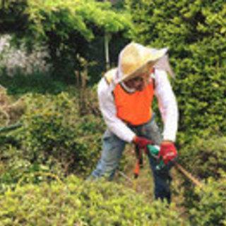 草刈、剪定、伐採、処分代行、空き家整備など承っています。高松市、...