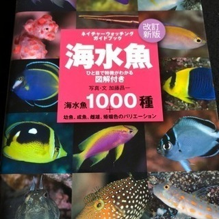 海水魚  1000種 改訂新版