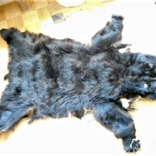 熊毛皮の敷物、送料無料