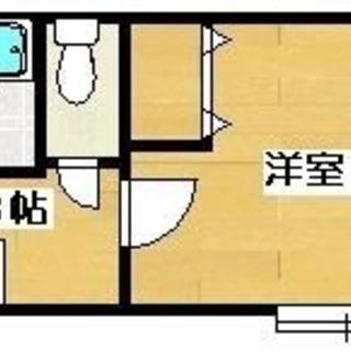 ☆ブライトタイムⅠ 406号室☆ 1K ☆選べる家具・家電プレゼン...