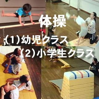 子供体操教室(3歳~小学生)子どもの健康向上に貢献