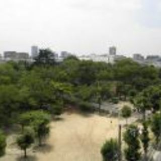 ・。最上階の南向きバルコニーから公園ビュー♪春には桜が♡・。*・。...