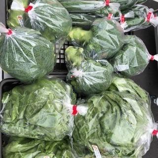 うまいもん!!!野菜販売🍀(* ॑ω ॑*  )