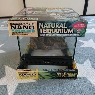 爬虫類 グラステラリウム ナノキューブ