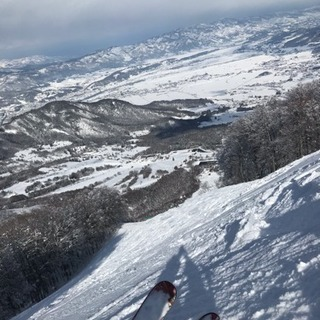 【メンバー募集】2/17(日)日帰り スキー・スノボ 宝台樹スキー場