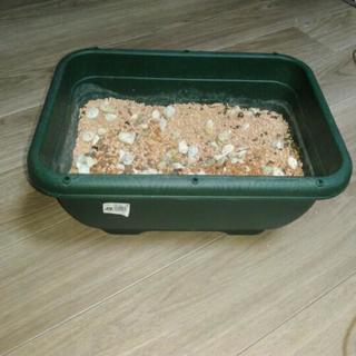 ファームプランター(四角い鉢)とセラミス
