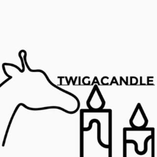 twigacandleアトリエ/札幌のろうそく屋さん。なんでもや...