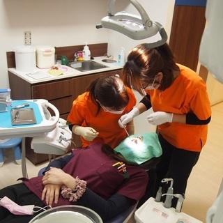 歯科衛生士スタッフ募集