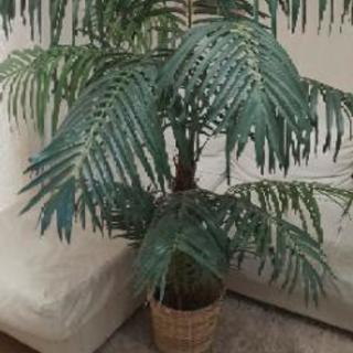 人工観葉植物150センチ
