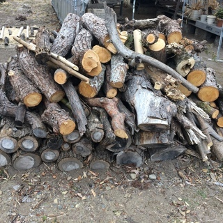 伐採した木 薪 薪ストーブ  合計1トン くらい?
