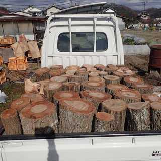 薪 薪の玉(原木)