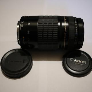 キャノンCanon望遠ズームレンズEF75-300mm F4-5...