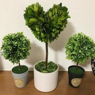 【決定】トピアリー ハート 観葉植物 3個セット