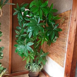 インテリア観葉植物造花