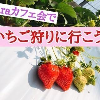 2月24日(日)11時〜古賀市☆laraカフェ会でいちご狩りに行こう❗️
