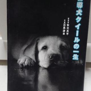 『決まりました!』盲導犬クィールの一生