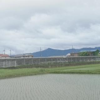 守山市 498万 太陽光発電で貸出中 土地の収益物件 − 滋賀県