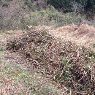 剪定ごみ、草刈りの草の処分をします