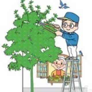 草むしり、草刈り・木の伐採はお任せください!便利屋 ライフワーク