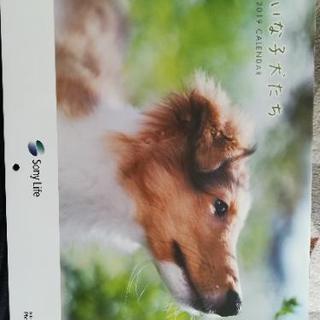 子犬 カレンダー2019