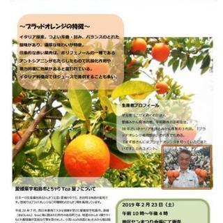 【ちゃりTea屋♪ブラッドオレンジ直販会】