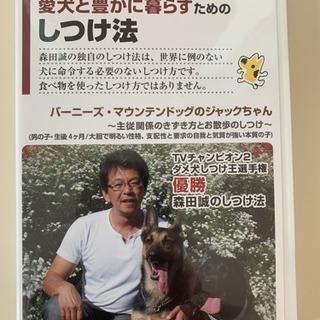 森田先生の愛犬と豊かに暮らすためのしつけ法