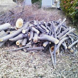 薪などにどうでしょうか