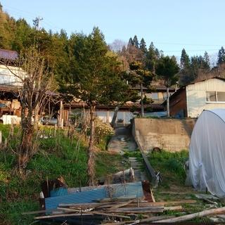森と水 自給の家「乙」:畑・養鶏・狩猟・DIY