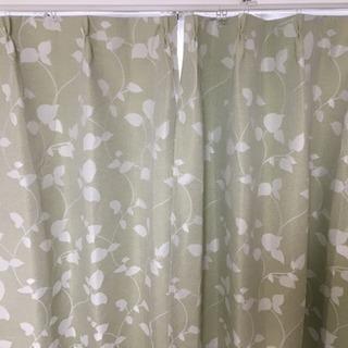 決まりました グリーンのカーテン