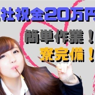【入社祝い金あり】簡単なお仕事で月30万円以上も可能!