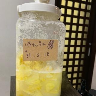 醗酵ジュース作り(ミネラル&酵素 講座)