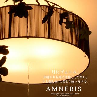 シーリングライト AMNERIS:アムネリス ブラック