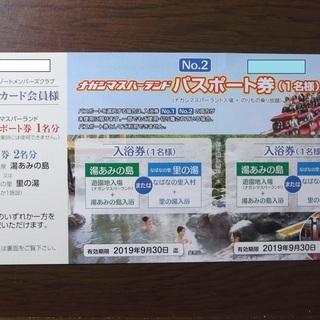 ナガシマスパーランド パスポート券1枚 送料無料!