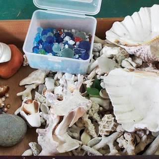 珊瑚のかけらとシーグラス