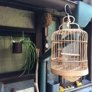 新品未使用◎竹で出来た鳥カゴ 鳥籠
