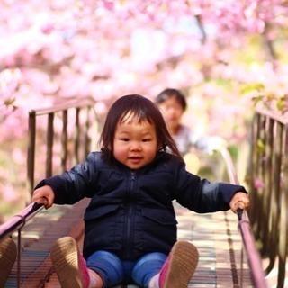 桜フォト撮影会にあつまれ〜!残席少なくなってきております!