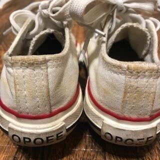 コンバース風子供靴14cm