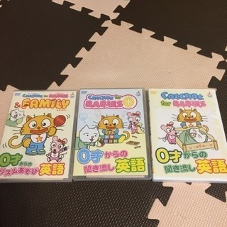 CatChat for babies  DVD3枚セット