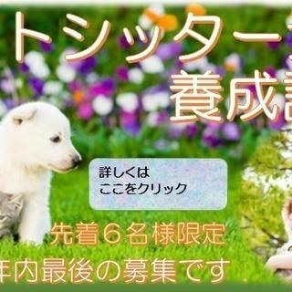 TV東京「たけしのニッポンのミカタ」で注目を浴びた <2day...