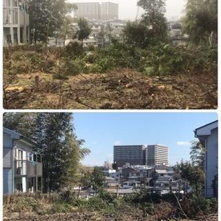 竹やぶ 林伐採 抜根工事なら ツチヤガーデンホームへ【所沢市