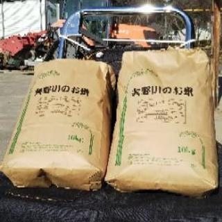 矢野川の美味しいお米(在庫残りわずか!)