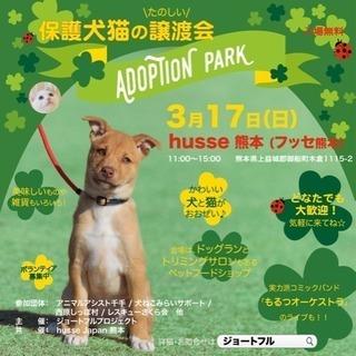 保護犬猫譲渡会「Adoption Park」