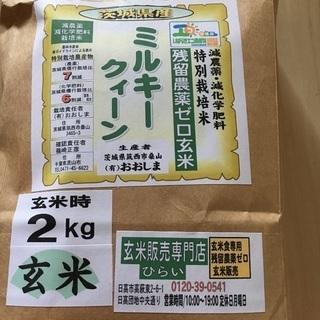 【減農薬・減化学肥料】特別栽培米 玄米2kg 米びつ当番2個付