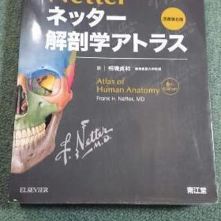 医学書 ネッター 解剖学アトラス 原書第6版